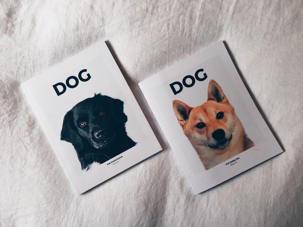 A conversation with DOG magazine